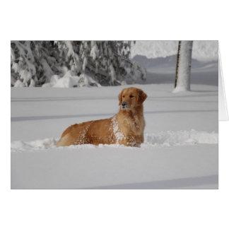 Cartão A neve de Maddi
