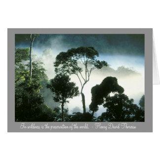 Cartão A névoa Enshrouds a floresta húmida de Amazon