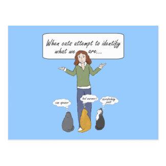Cartão à nora engraçado dos gatinhos cartão postal