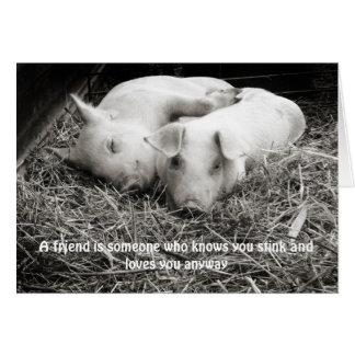 Cartão A nota/cartão de um amigo com aperto dos porcos