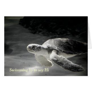 Cartão A tartaruga da natação diz olá!