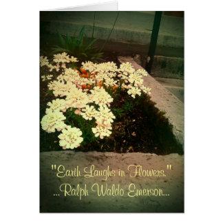 Cartão A terra ri nas flores
