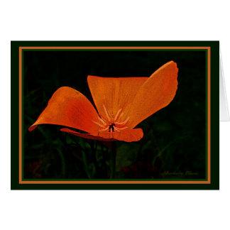 Cartão A terra ri nas flores: Papoila.  Citações internas