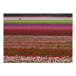 Cartão A tulipa coloca a inspiração
