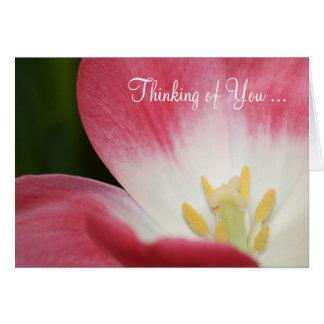 Cartão A tulipa coral cor-de-rosa que pensa de você carda