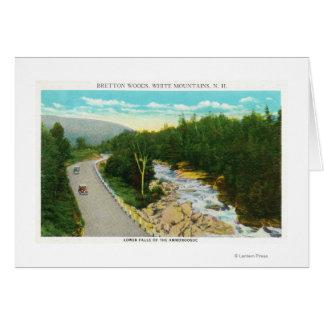 Cartão A vista do Ammonoosuc abaixa quedas