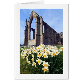 Cartão Abadia de Bolton, Wharfedale, os Dales de