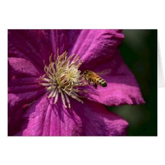 Cartão Abelha do mel na flor do Clematis