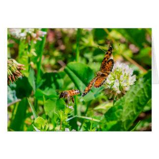 Cartão Abelha e borboleta