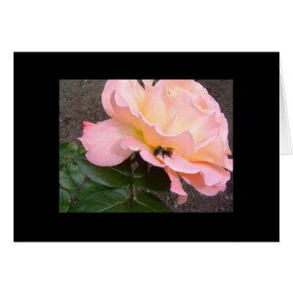 Cartão Abelha em um rosa