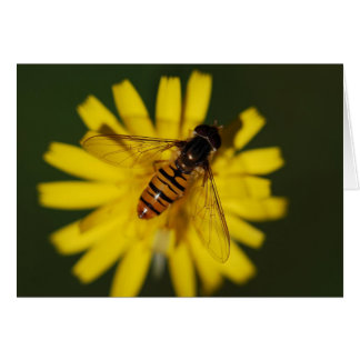 Cartão Abelha legal do mel na flor na fotografia da