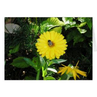 Cartão Abelha na flor