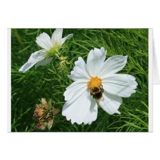Cartão Abelha na flor branca