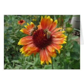 Cartão Abelhas na flor geral