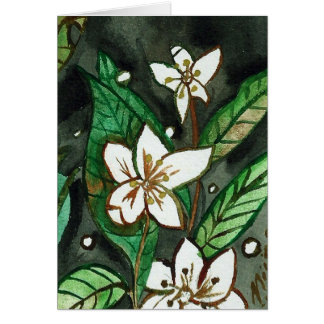 Cartão abençoado da flor do solstício de verão