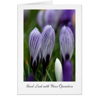 Cartão Açafrões do primavera - boa sorte com suas