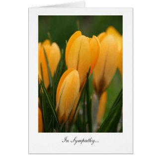 Cartão Açafrões dourados do primavera - na simpatia