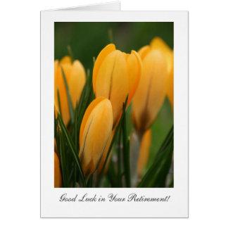 Cartão Açafrões dourados do primavera - sorte em sua