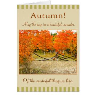 Cartão Acção de graças feliz! Álamos tremedores coloridos