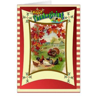 Cartão Acção de graças feliz - perus e galinhas
