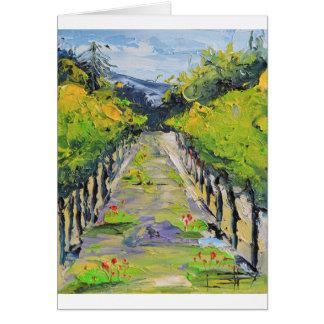 Cartão Adega de Califórnia, videiras do vinhedo do verão