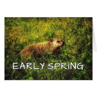 Cartão adiantado do primavera