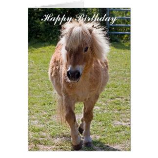 Cartão adorável do aniversário do pônei de