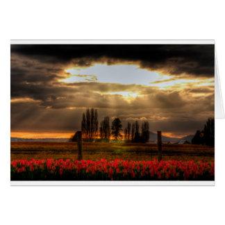 Cartão Adored das tulipas