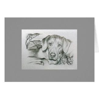 Cartão africano do cão de Rhodesian Ridgeback