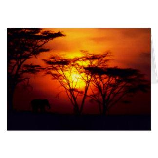 Cartão africano do por do sol