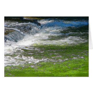 Cartão Água de pressa