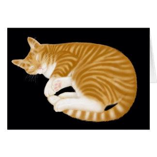 Cartão alaranjado do gato de gato malhado do sono