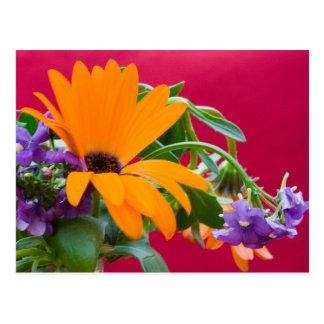 Cartão alaranjado e roxo do tema da flor cartão postal