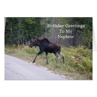 Cartão Alces novos no aniversário dos Estrada-Sobrinho