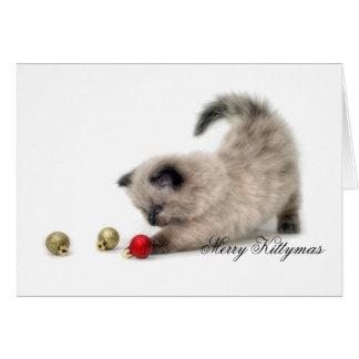 Cartão alegre de Kittymas