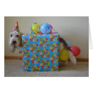 Cartão Alguém pediu um presente de aniversário?