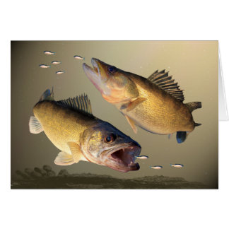 Cartão Alimentação de dois Walleye