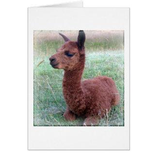 Cartão Alpaca de Hannah do bebê