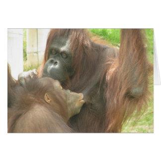 Cartão Amamentação do orangotango