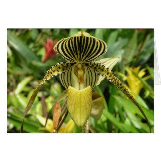 Cartão amarelo da flor da orquídea
