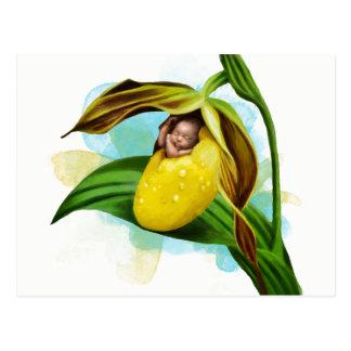 Cartão amarelo da senhora deslizador