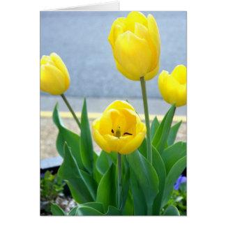 Cartão amarelo das tulipas