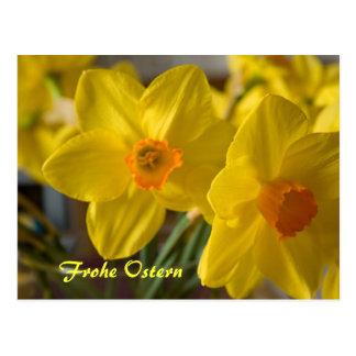 Cartão amarelo de Frohe Ostern dos daffodils