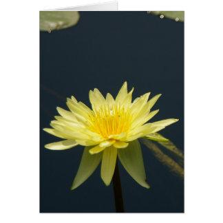 Cartão amarelo de Lotus Waterlily