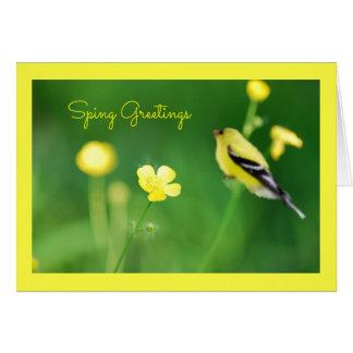 Cartão amarelo do Goldfinch