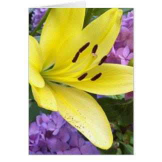 Cartão amarelo do Hydrangea do lírio e da lavanda