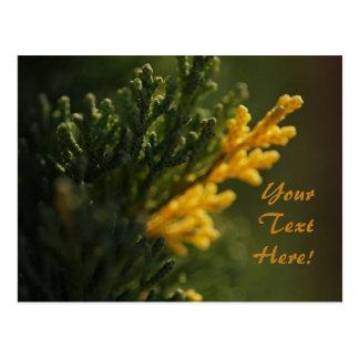 Cartão amarelo morno verde rico da foto da planta