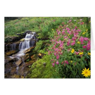 Cartão America do Norte, EUA, Montana, nacional 4 da