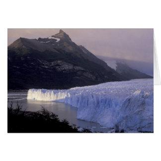 Cartão Ámérica do Sul, Patagonia, Argentina Parque