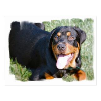 Cartão amigável de Rottweiler